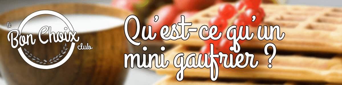 Petit gaufrier - Achat / Vente pas cher