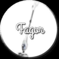 balai vapeur fagor
