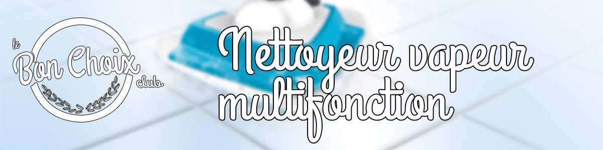 Nettoyeur vapeur multifonction - Achat / Vente pas cher