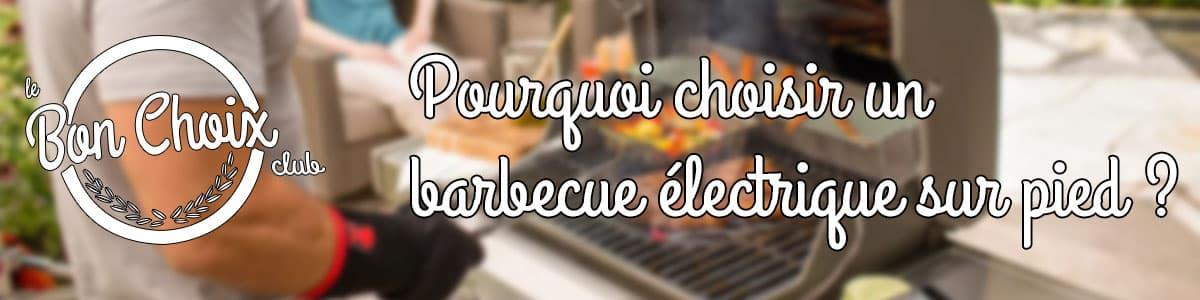acheter barbecue plancha electrique sur pied